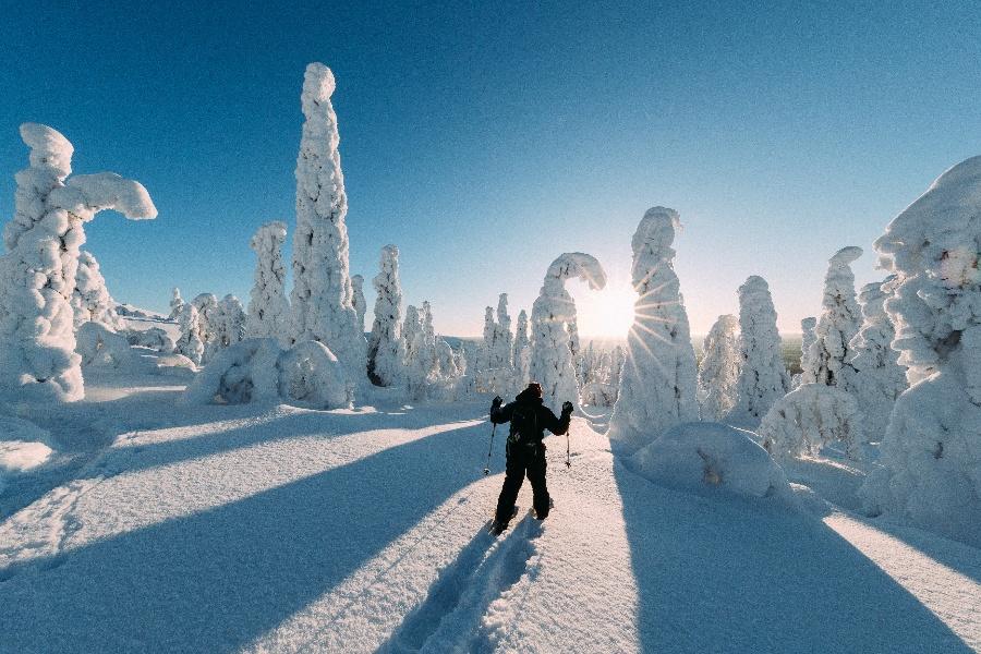 Sneeuwschoenwandelen in Lapland