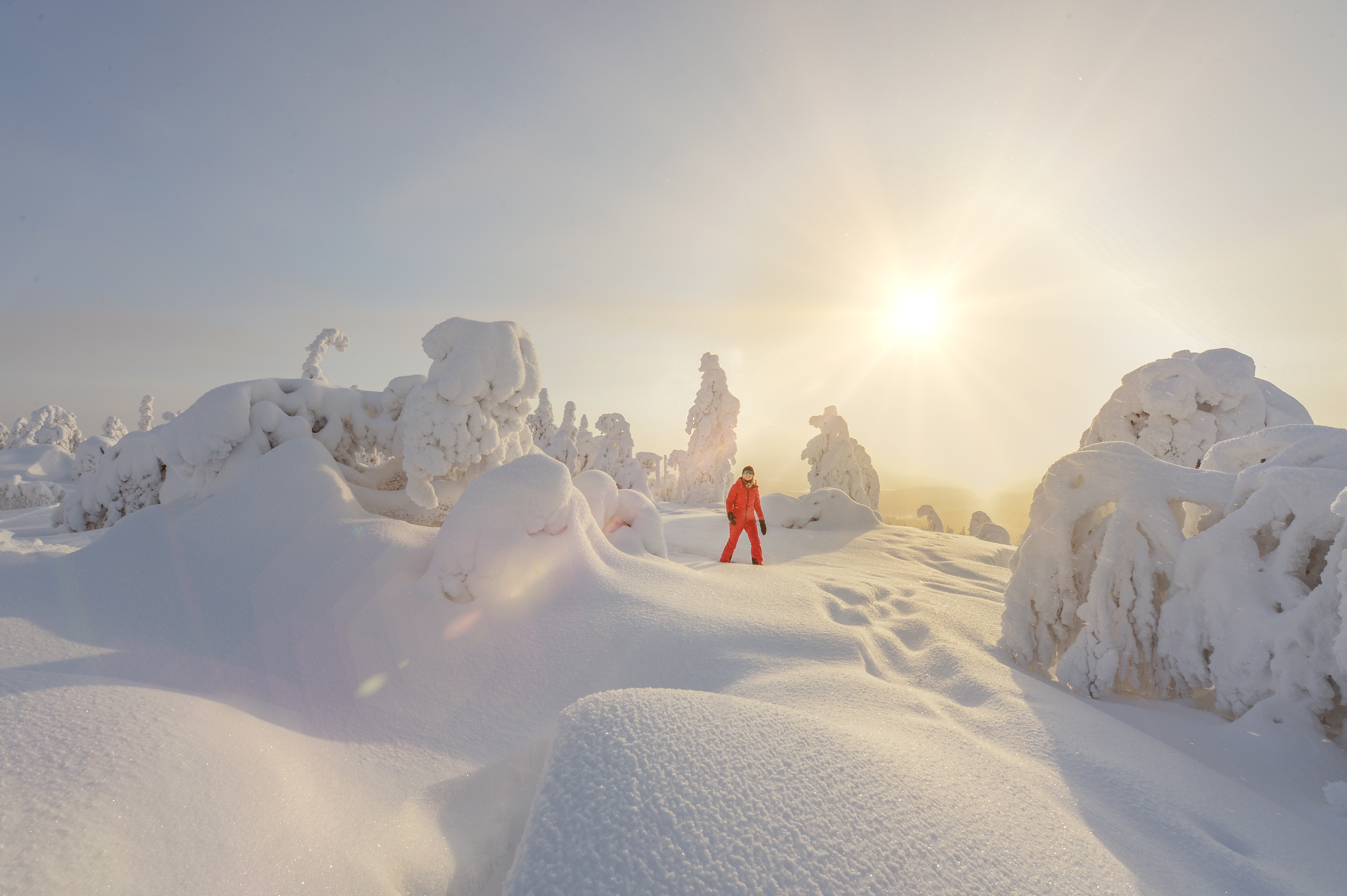 Sneeuwschoenwandelen in de wildernis van Lapland