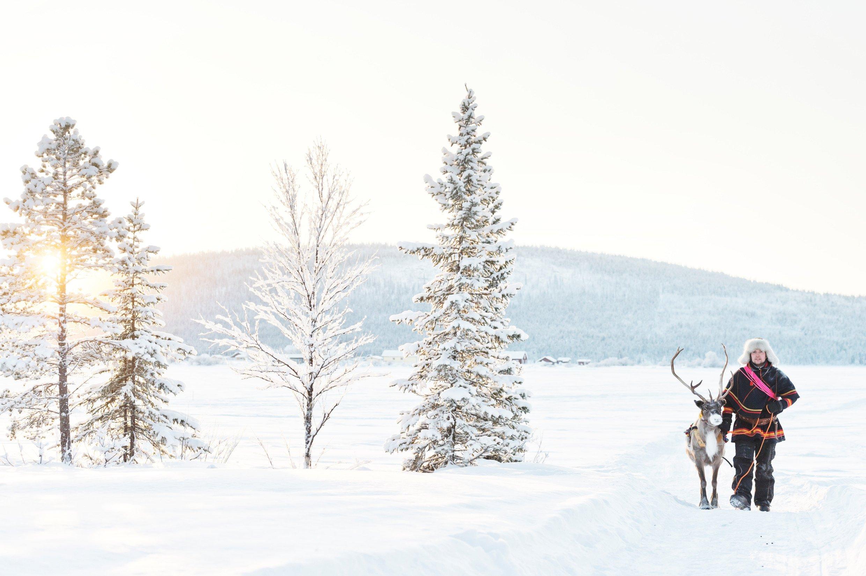 anna_öhlund-reindeer_walk-6485